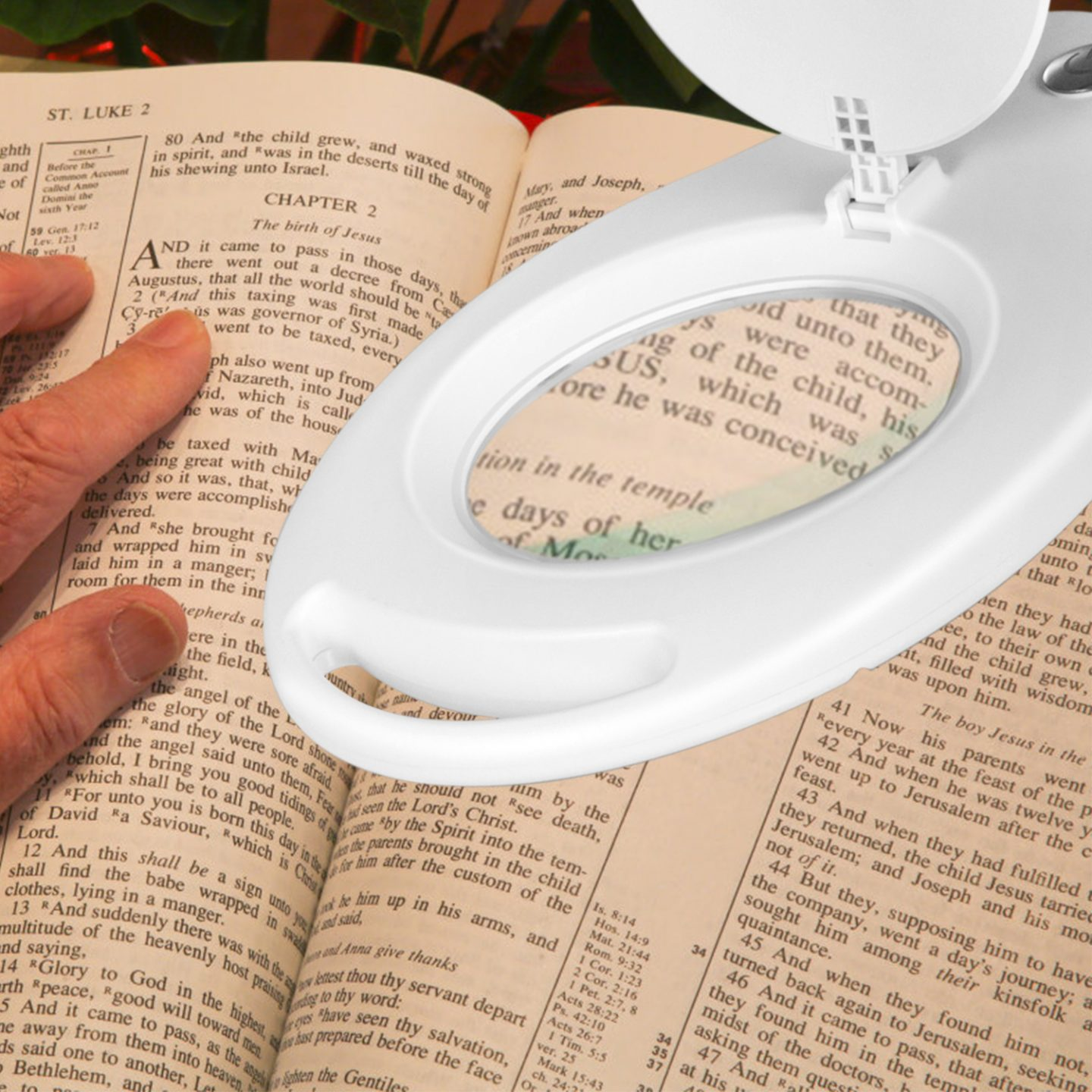 Clarity Magnifier Lamp